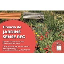 Creació de jardins sense reg