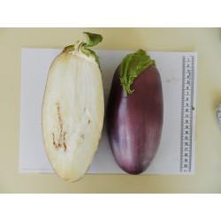 Albergínia llarga de Menorca