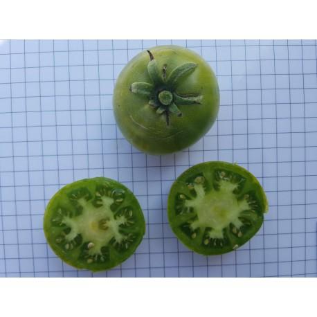Tomàquet ple verd