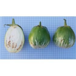 Albergínia verda